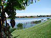 J-Bay-Lake-View-1